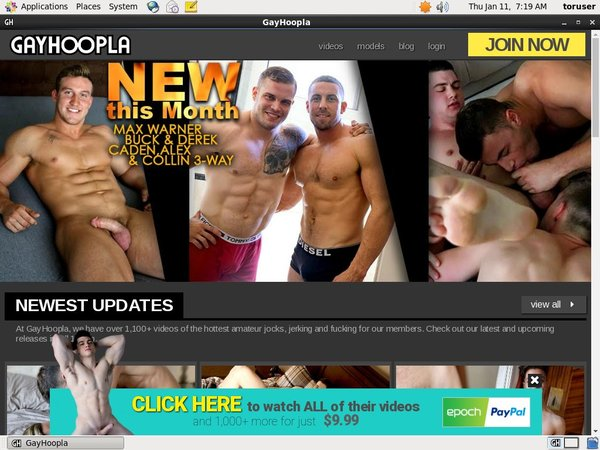 Does Gayhoopla Use Paypal?